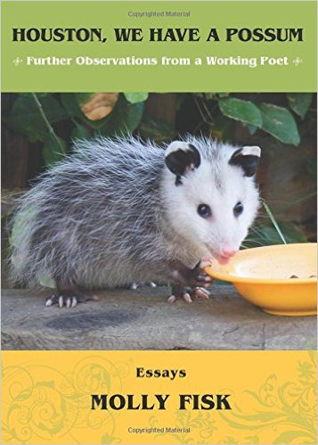 possums essay