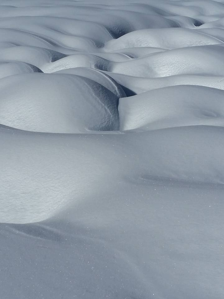 snowLaurieWoodum